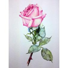 Принт А5 Роза 3