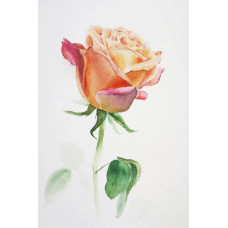 Принт А5 Роза 5