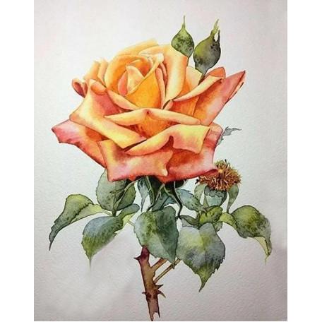 Принт А5 Роза 1