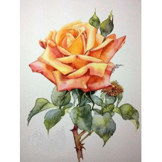 Принт А5 Роза