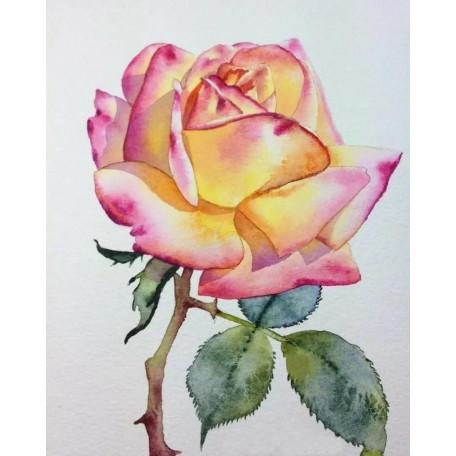 Принт А5 Роза2